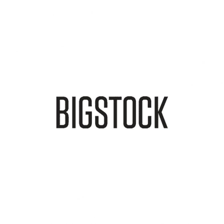 Bigstock recenze 1